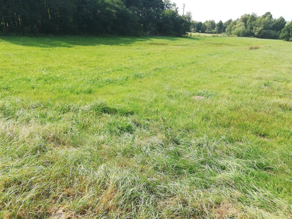 Działka rolna na sprzedaż Luzino, Zgody  12593m2 Foto 7