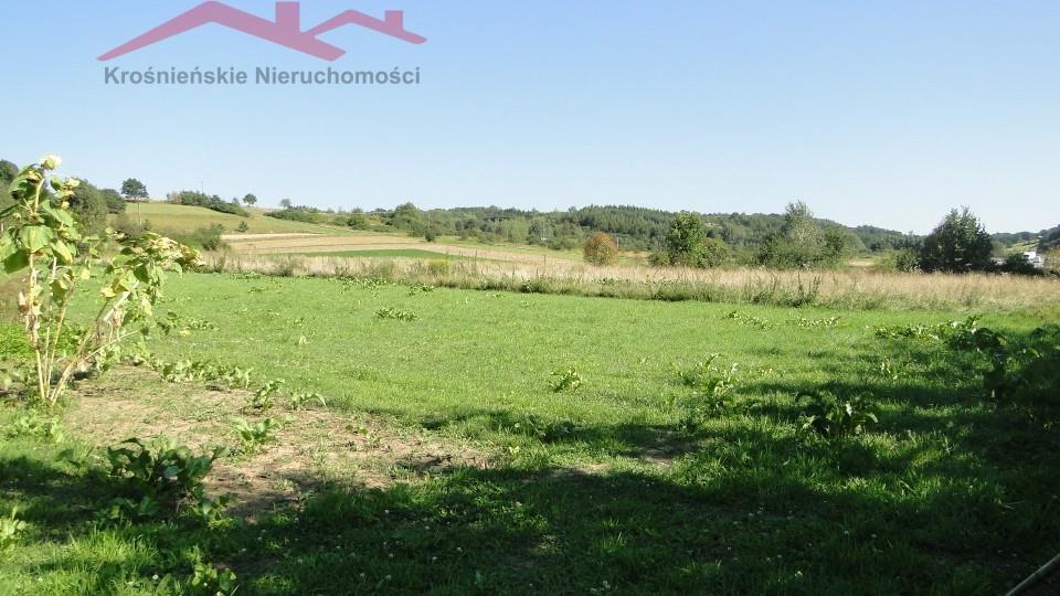 Działka rolna na sprzedaż Brzozów  1000m2 Foto 3