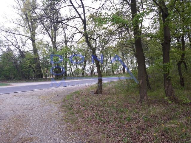 Działka budowlana na sprzedaż Łódź, Bałuty, Rogi, Strykowska  6209m2 Foto 6