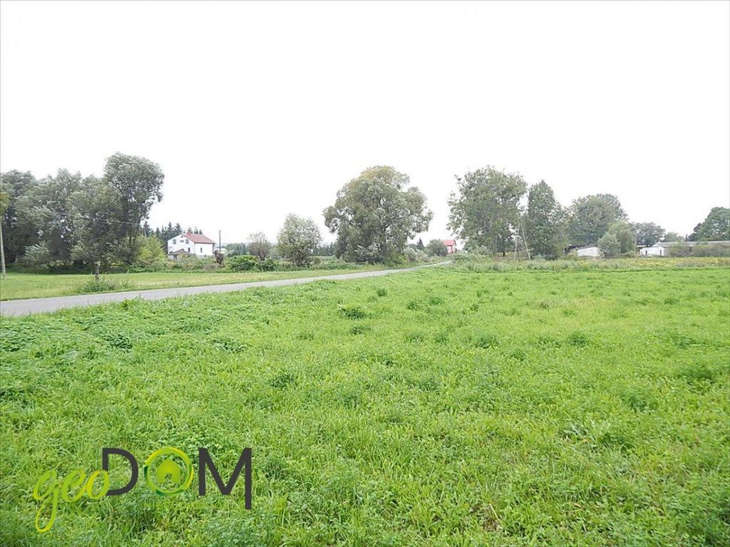 Działka rolna na sprzedaż Horodyszcze-Kolonia  11293m2 Foto 5