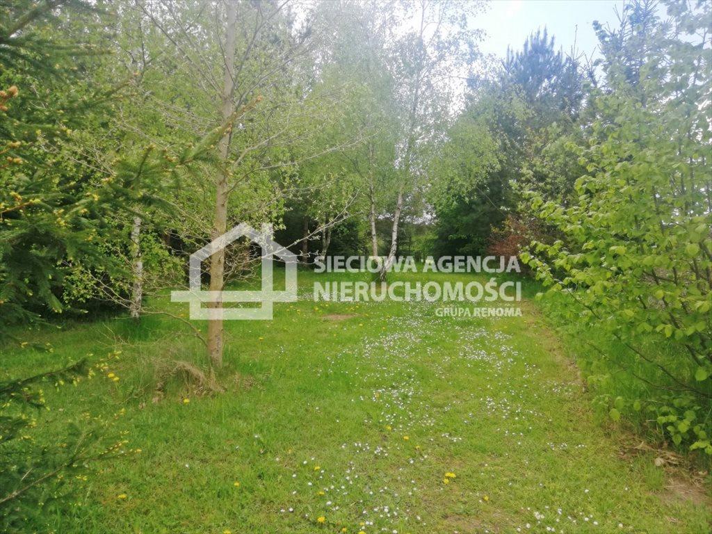 Działka leśna na sprzedaż Żuławka  1730m2 Foto 4