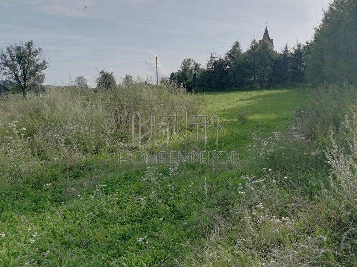 Działka leśna na sprzedaż Kurów  44940m2 Foto 2