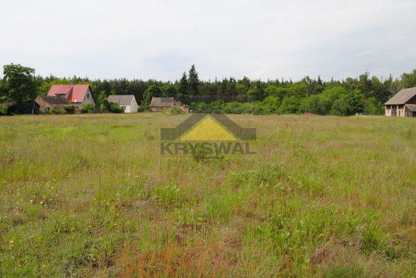 Działka budowlana na sprzedaż Pyrzany  3003m2 Foto 5