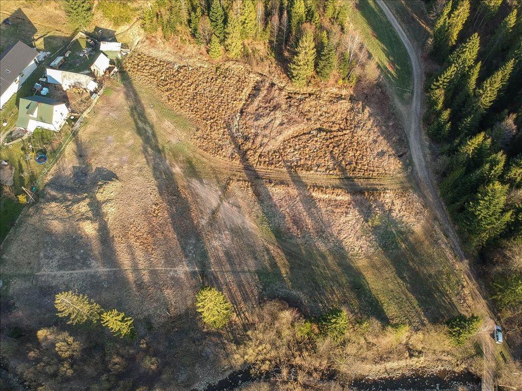 Działka rolna na sprzedaż Rajcza, Rajcza  6477m2 Foto 4
