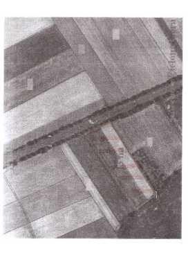 Działka rolna na sprzedaż Kalsk  14300m2 Foto 1