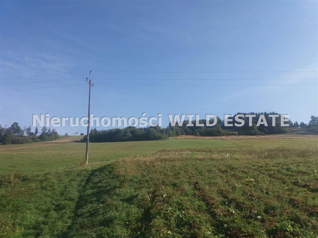 Działka rolna na sprzedaż Olszanica, Paszowa  10100m2 Foto 2