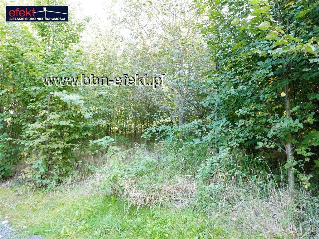 Działka inna na sprzedaż Pisarzowice  987m2 Foto 3