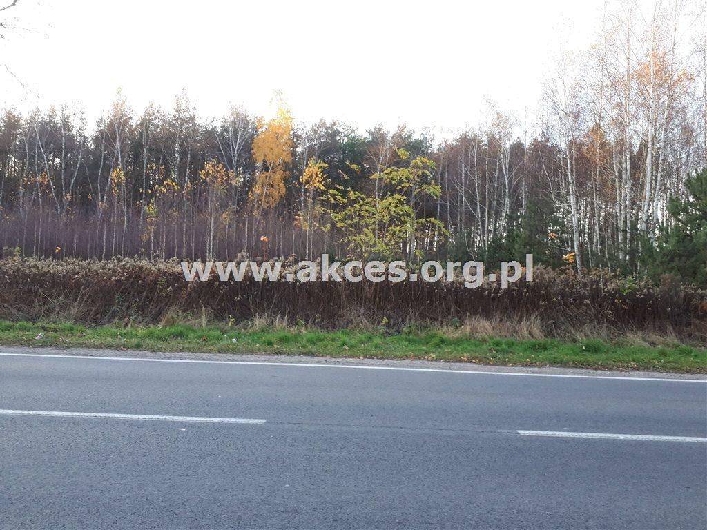 Działka leśna na sprzedaż Nowy Prażmów  17600m2 Foto 2