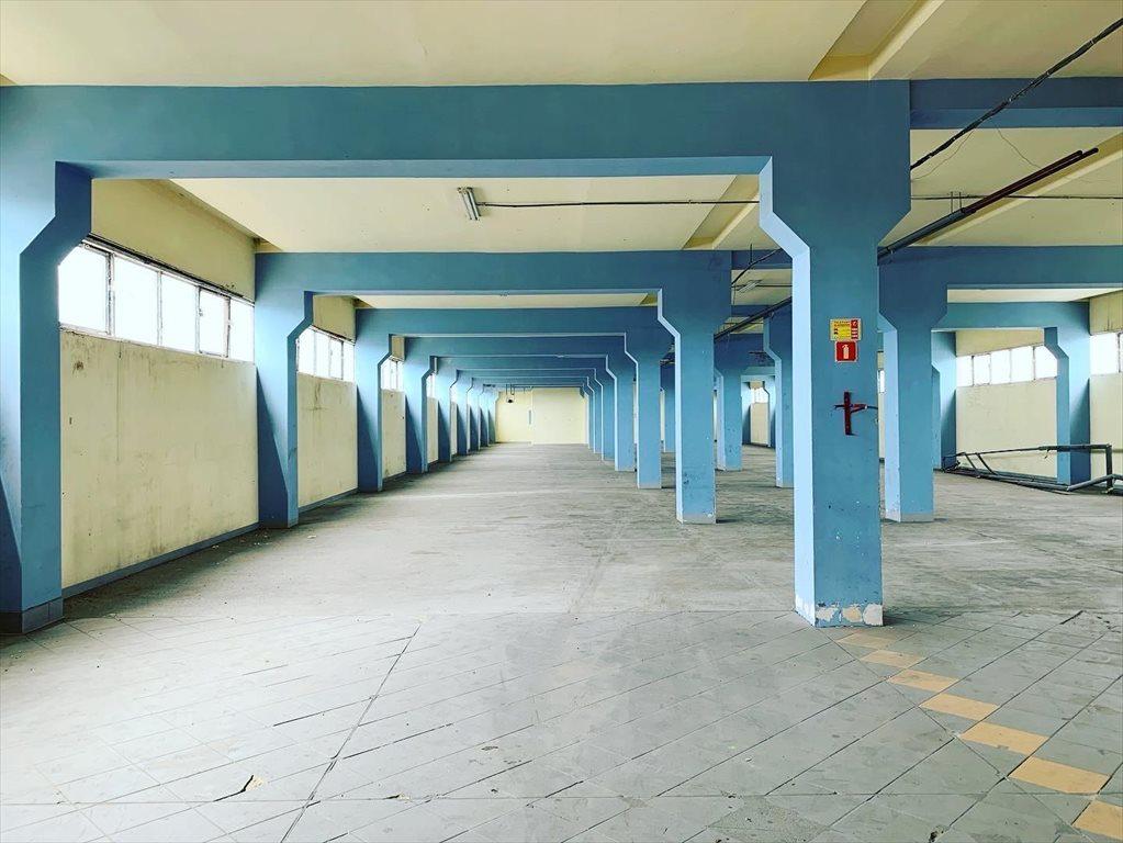 Lokal użytkowy na wynajem Leszno  800m2 Foto 6