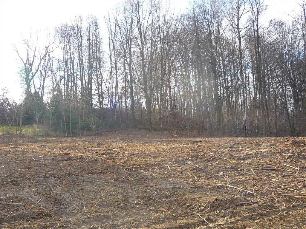 Działka budowlana na sprzedaż Gaj  1000m2 Foto 5