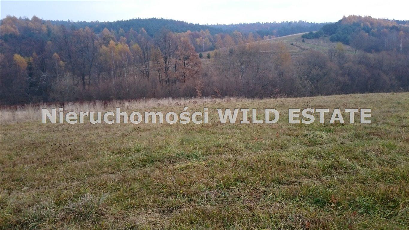 Działka rolna na sprzedaż Solina, Bereżnica Wyżna  42393m2 Foto 1