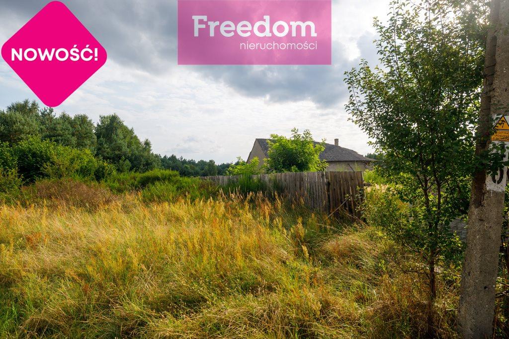 Działka rolna na sprzedaż Ożegów, Piaskowa  30026m2 Foto 6