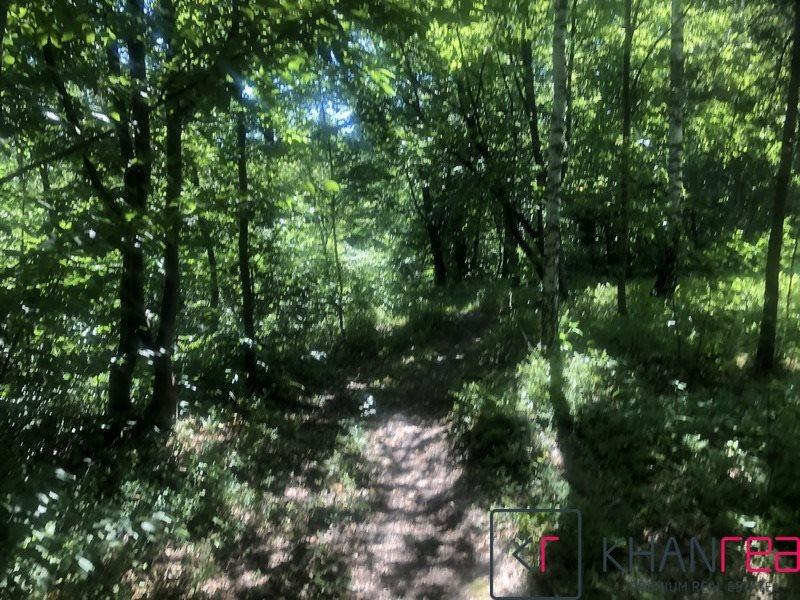 Działka leśna na sprzedaż Sobików  15000m2 Foto 9