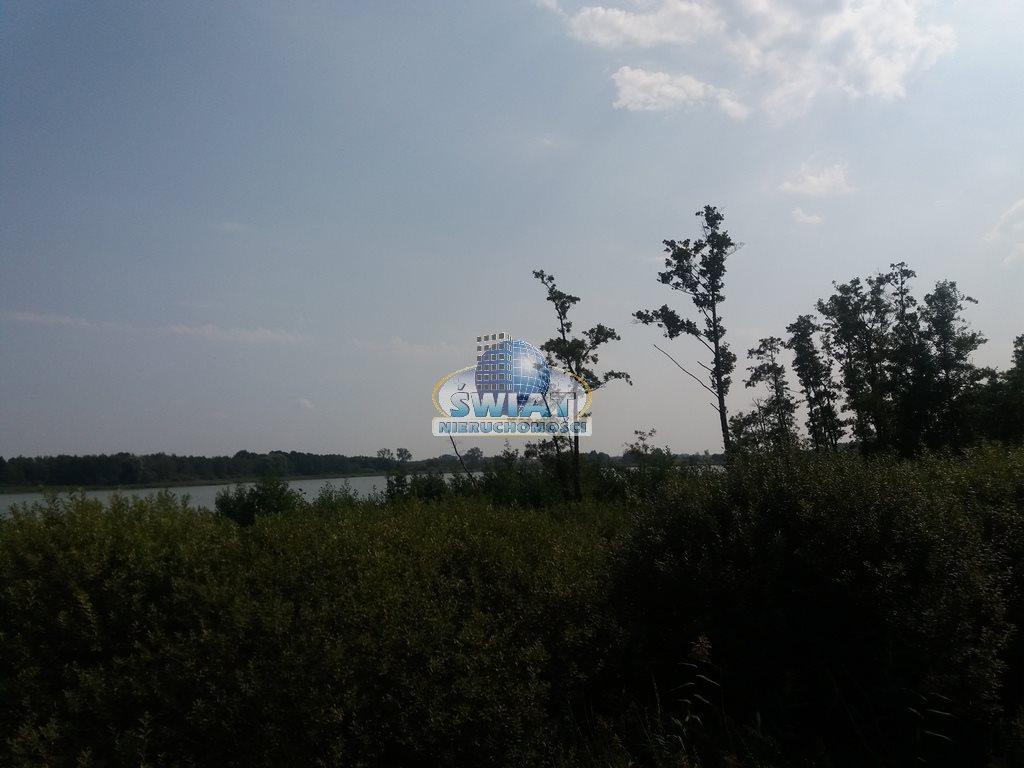 Działka rolna na sprzedaż Dobrzany  11600m2 Foto 3