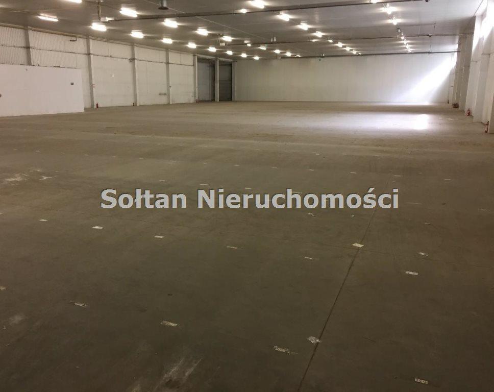 Lokal użytkowy na wynajem Warszawa, Targówek  1324m2 Foto 6