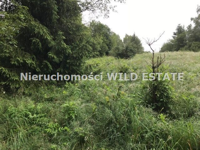 Działka rolna na sprzedaż Cisna, Krzywe  4110m2 Foto 1