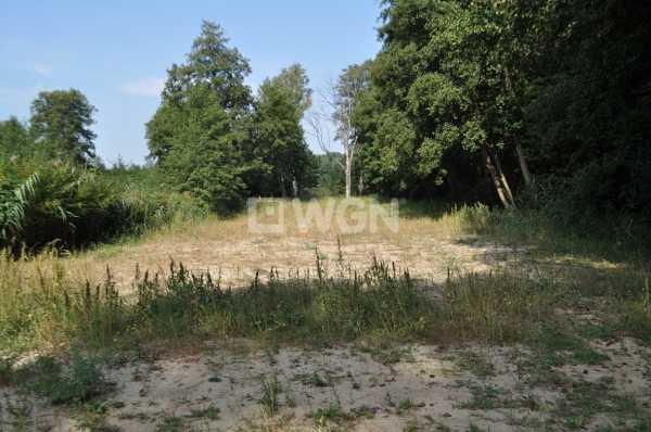 Działka budowlana na sprzedaż Sława, Nowosolska  2900m2 Foto 8