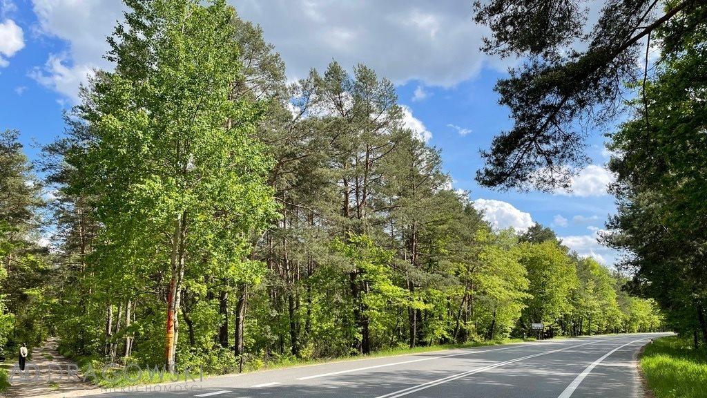 Działka leśna na sprzedaż Wilga  5369m2 Foto 4