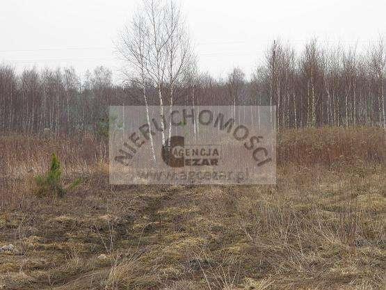 Działka budowlana na sprzedaż Olesin  1148m2 Foto 2