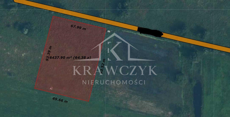 Działka rolna na sprzedaż Dobra  6399m2 Foto 4