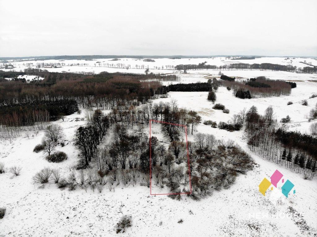 Działka rolna na sprzedaż Skolity  3455m2 Foto 2