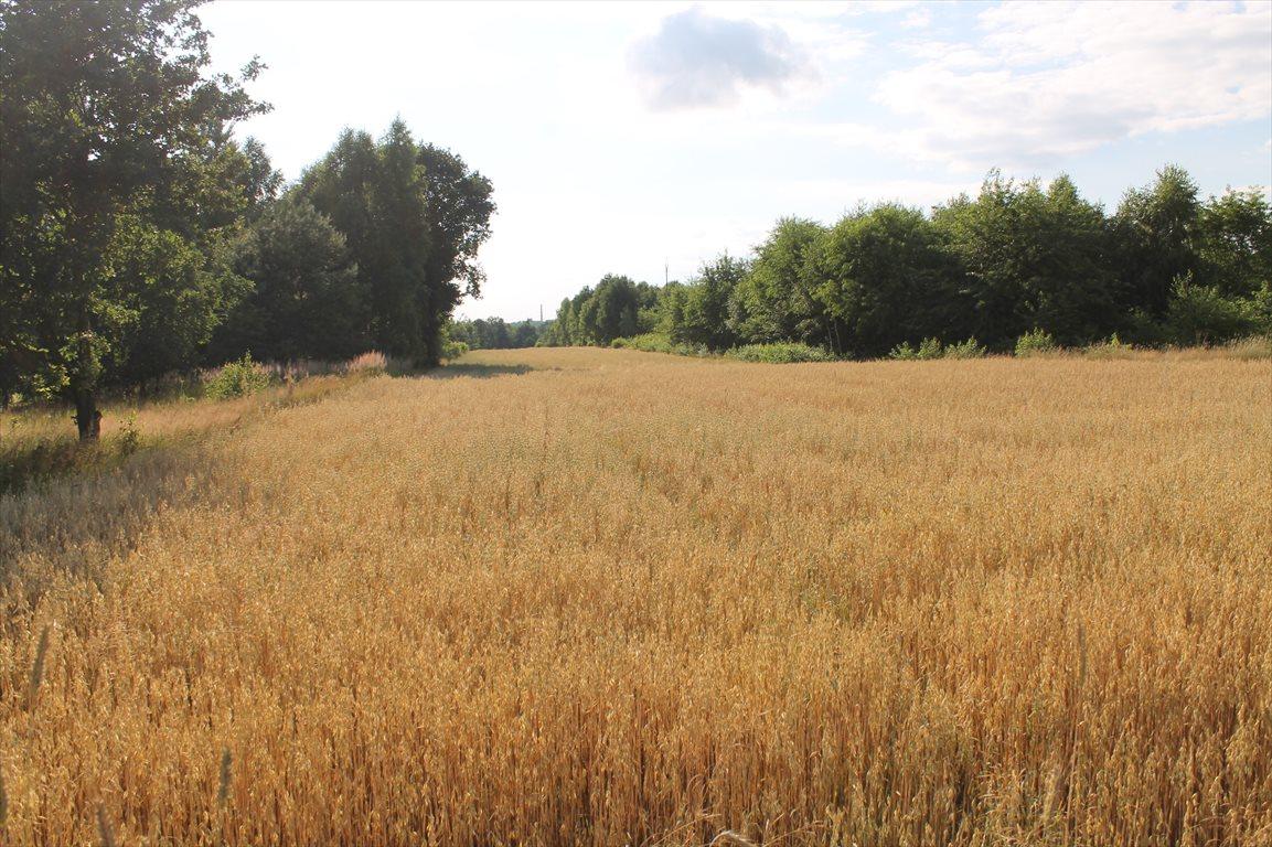 Działka rolna na sprzedaż Łagiewniki Nowe  9500m2 Foto 15