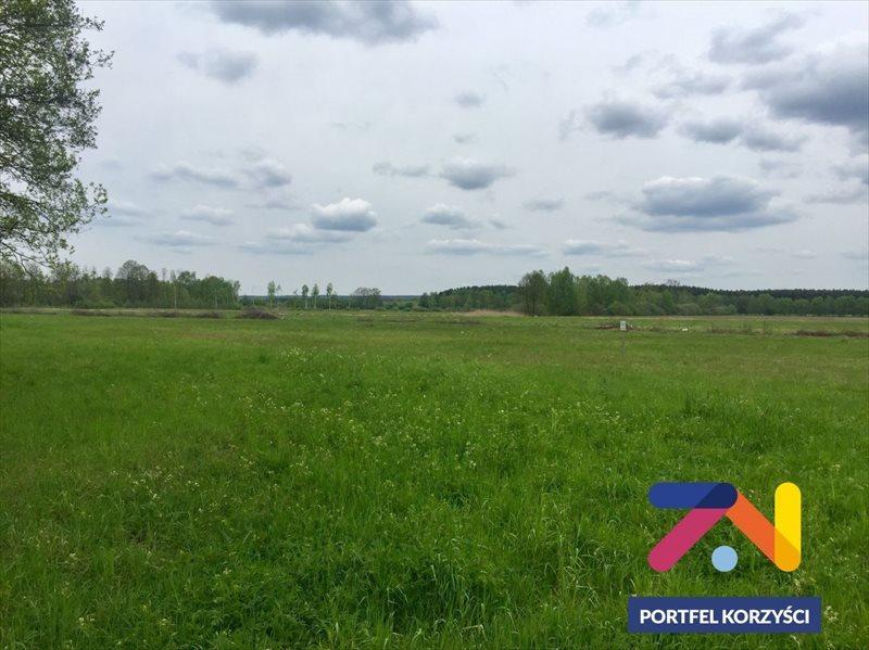 Działka rolna na sprzedaż Świdnica, Łochowo  42400m2 Foto 4
