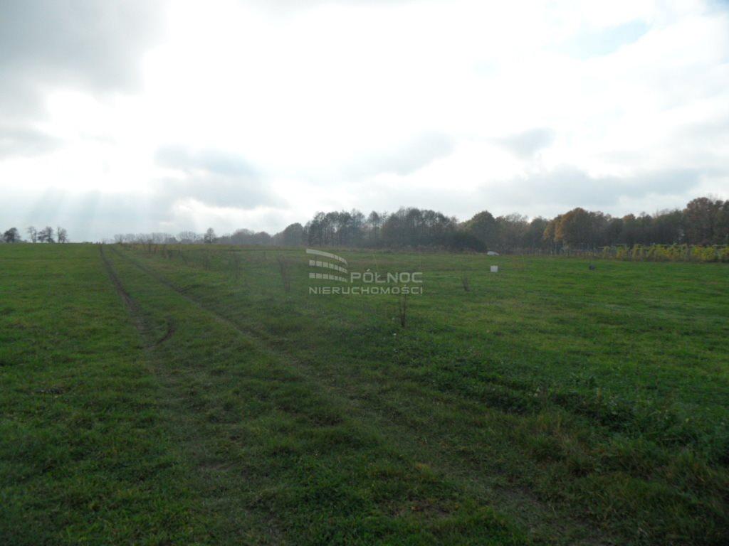 Działka rolna na sprzedaż Mikołów, Kąty, Kąty  3260m2 Foto 3
