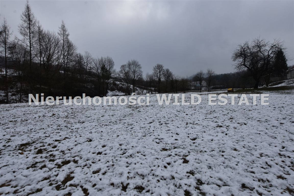 Działka rolna na sprzedaż Olszanica, Paszowa  4376m2 Foto 4
