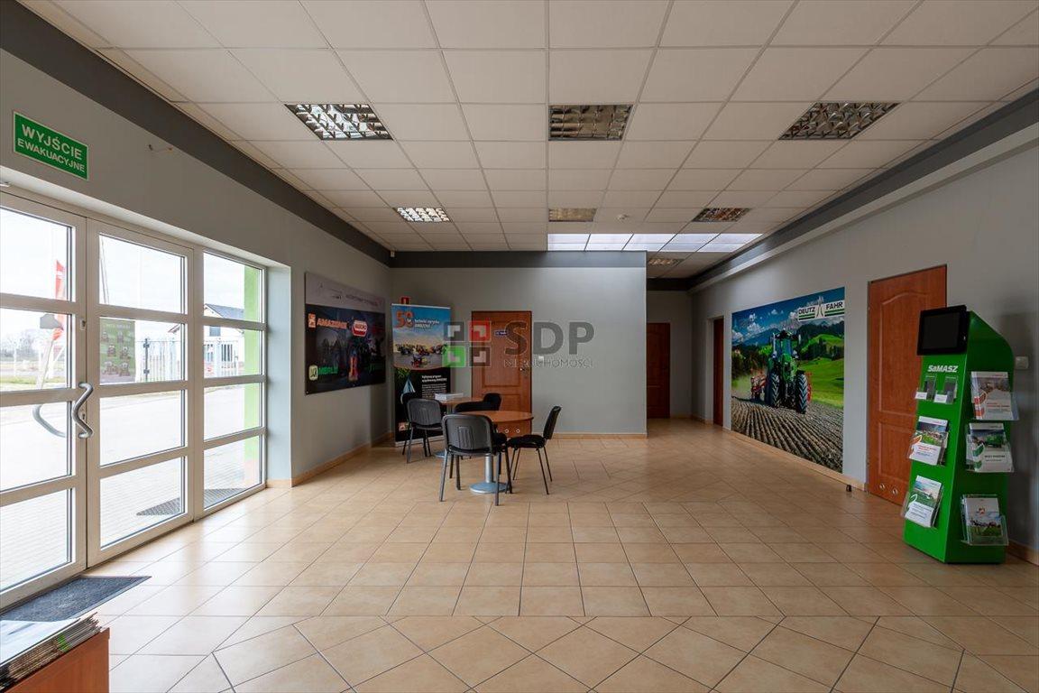 Działka inwestycyjna na sprzedaż Budziszów Wielki  9276m2 Foto 12