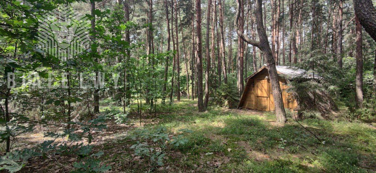 Działka leśna na sprzedaż Radachówka  1200m2 Foto 4