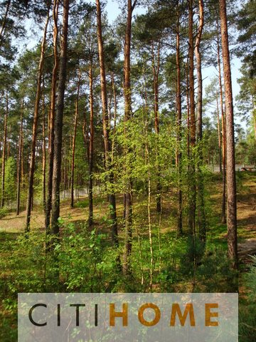 Działka budowlana na sprzedaż Józefów, Reymonta  1500m2 Foto 8