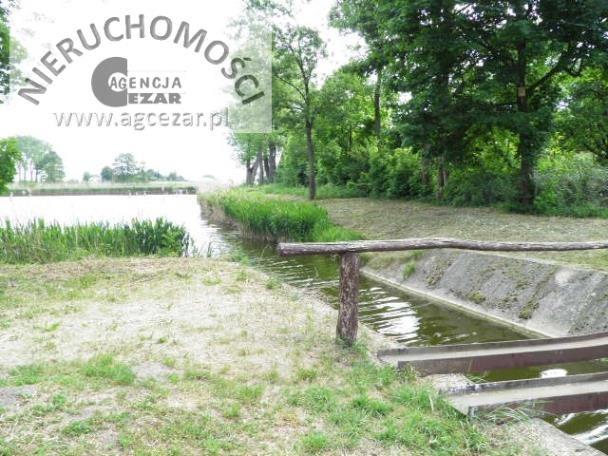 Działka rolna na sprzedaż Mrozy  44472m2 Foto 10