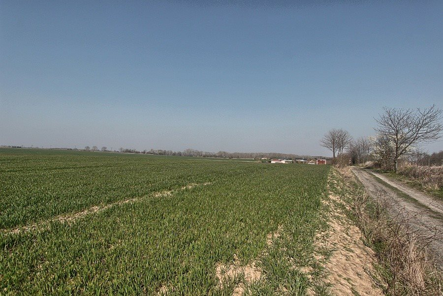 Działka rolna na sprzedaż Siadło Górne  3000m2 Foto 1