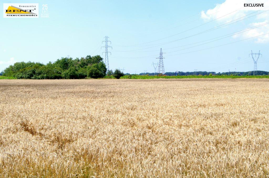 Działka rolna na sprzedaż Kobylanka  14458m2 Foto 3