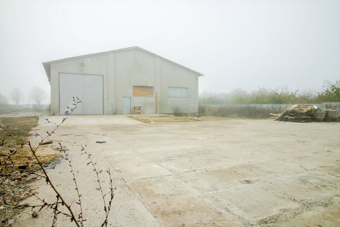 Lokal użytkowy na sprzedaż Nowy Gołębin  1100m2 Foto 3