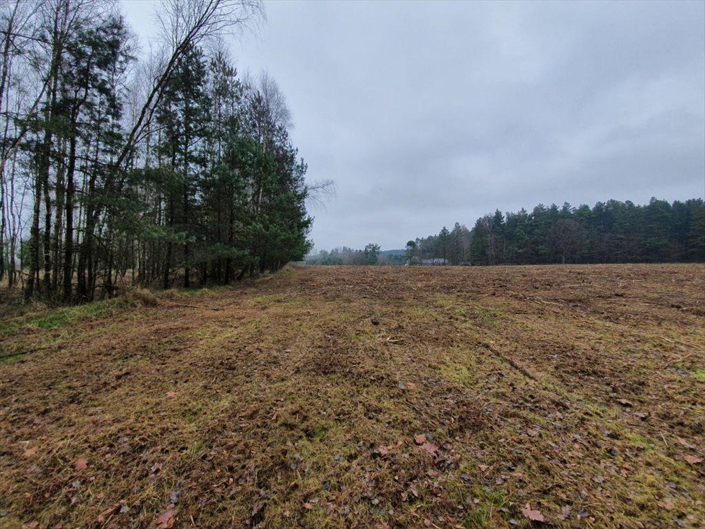 Działka rolna na sprzedaż Donimierz, Mgieł Porannych  3004m2 Foto 1