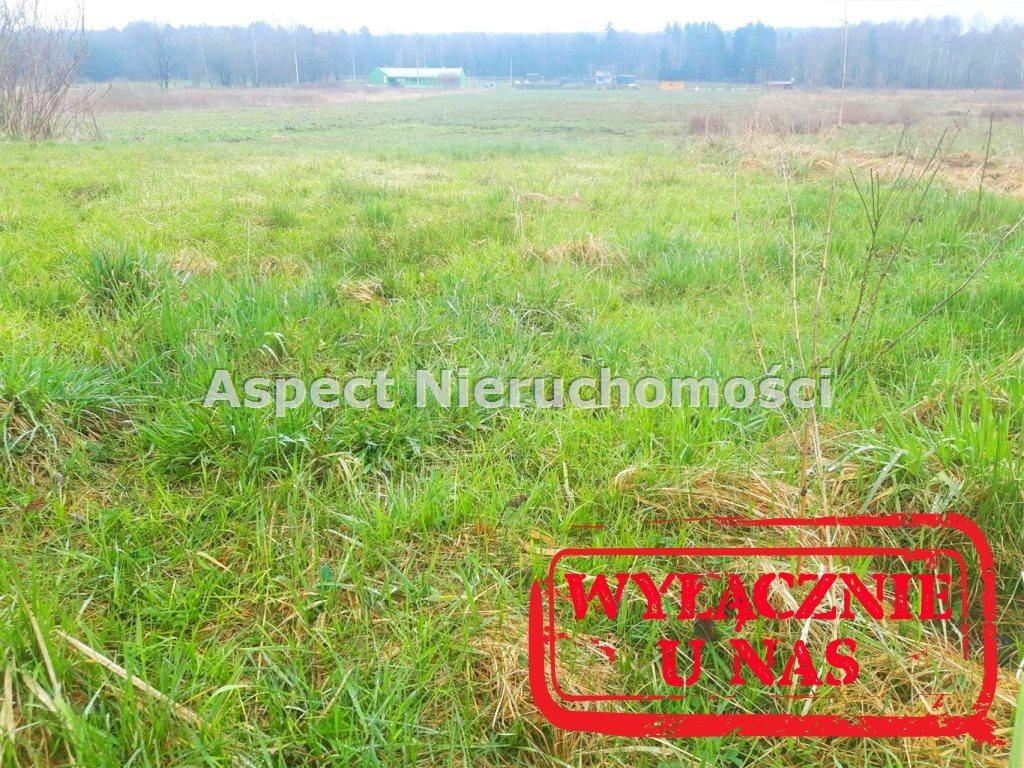 Działka leśna na sprzedaż Zwonowice  3505m2 Foto 1