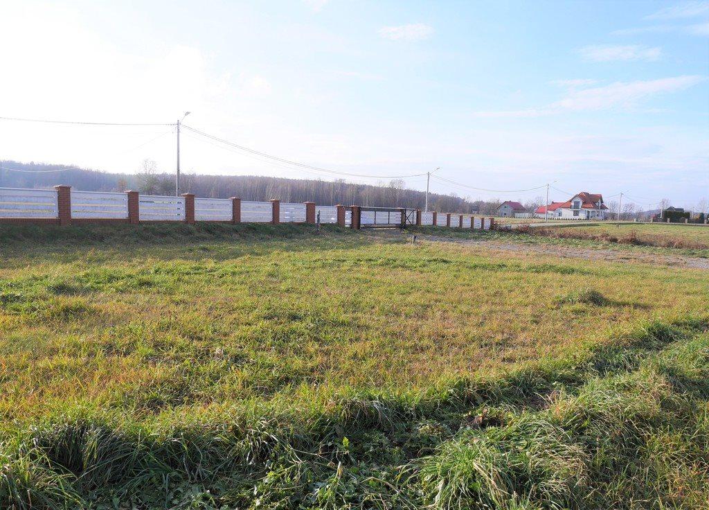Działka budowlana na sprzedaż Lechów  8399m2 Foto 8