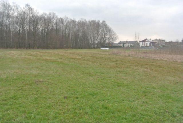 Działka budowlana na sprzedaż Mikołów, Borowa Wieś  2256m2 Foto 4
