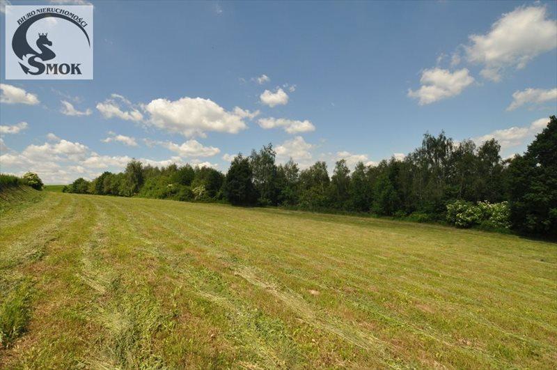 Działka rolna na sprzedaż Wilczkowice  15000m2 Foto 3