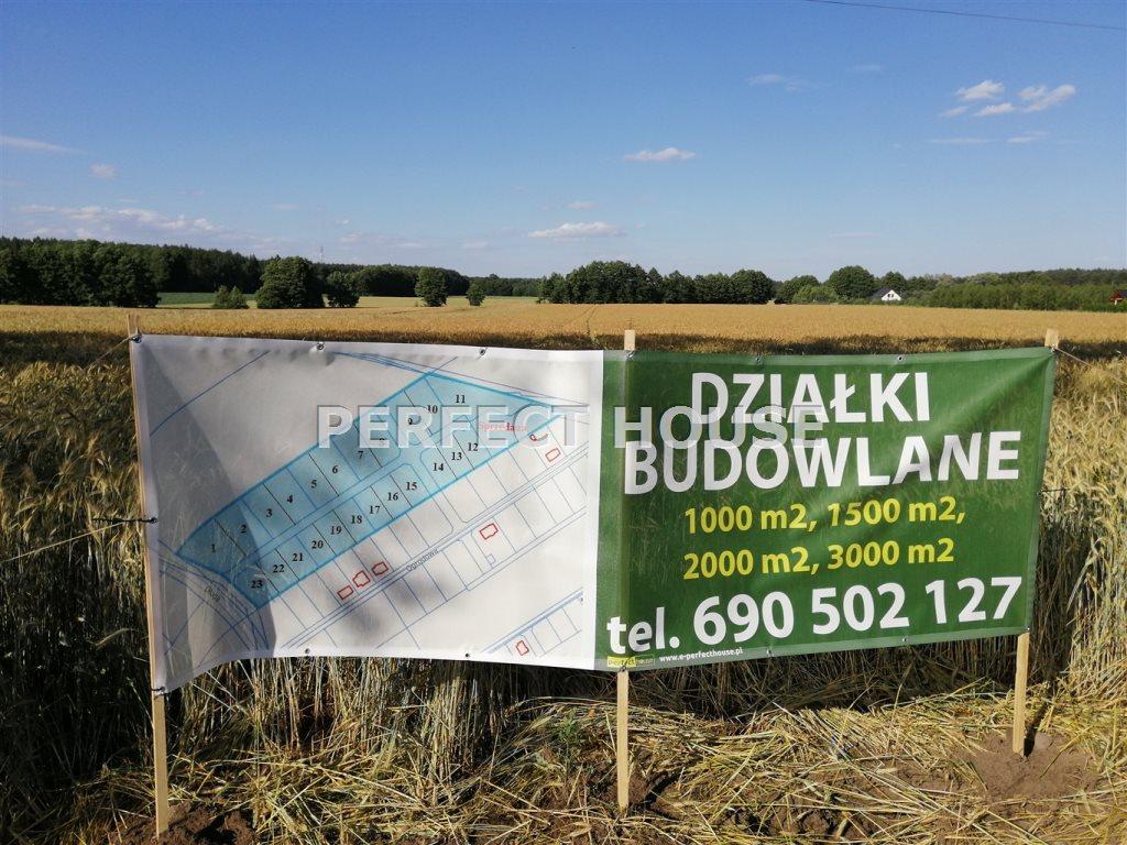 Działka budowlana na sprzedaż Radzewice  1574m2 Foto 6