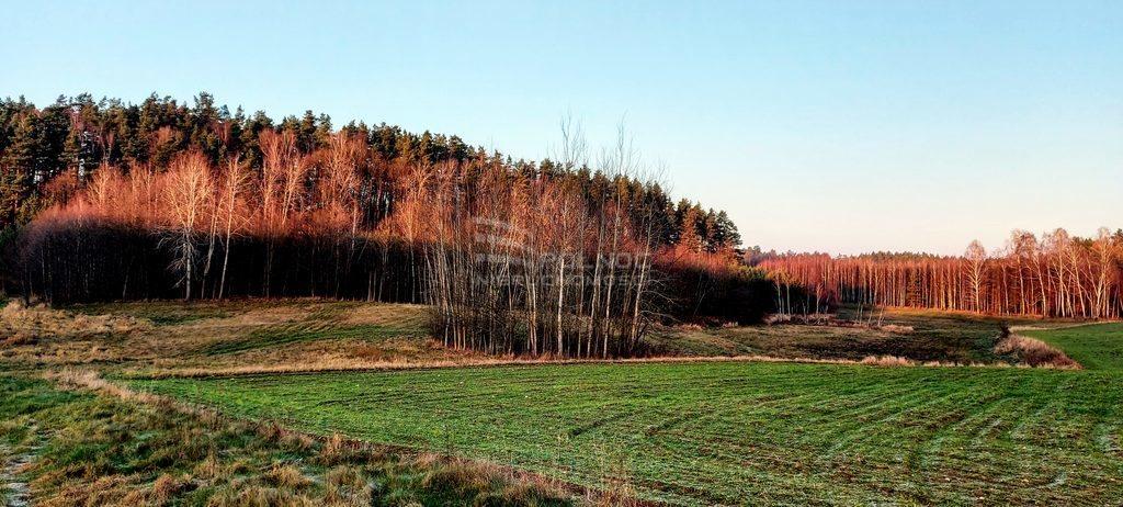 Działka leśna na sprzedaż Samagowo  26558m2 Foto 5