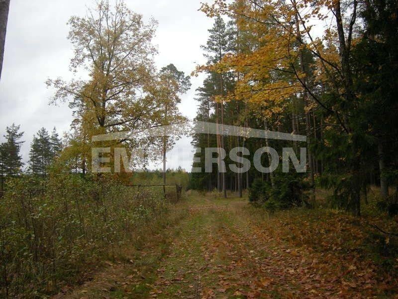 Dom na sprzedaż Pisz  1100m2 Foto 9