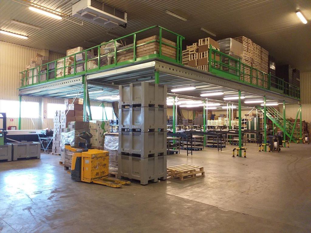 Lokal użytkowy na sprzedaż Wsola  1800m2 Foto 2