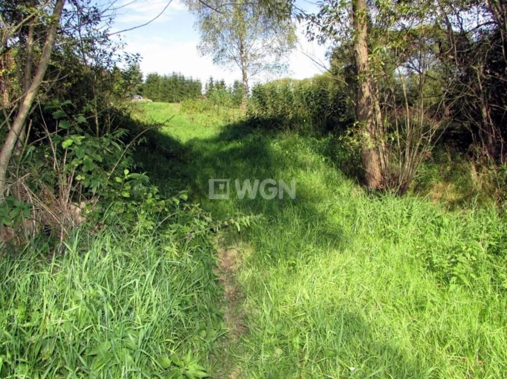 Działka inwestycyjna na sprzedaż Mchawa, Mchawa, Mchawa  1613m2 Foto 8