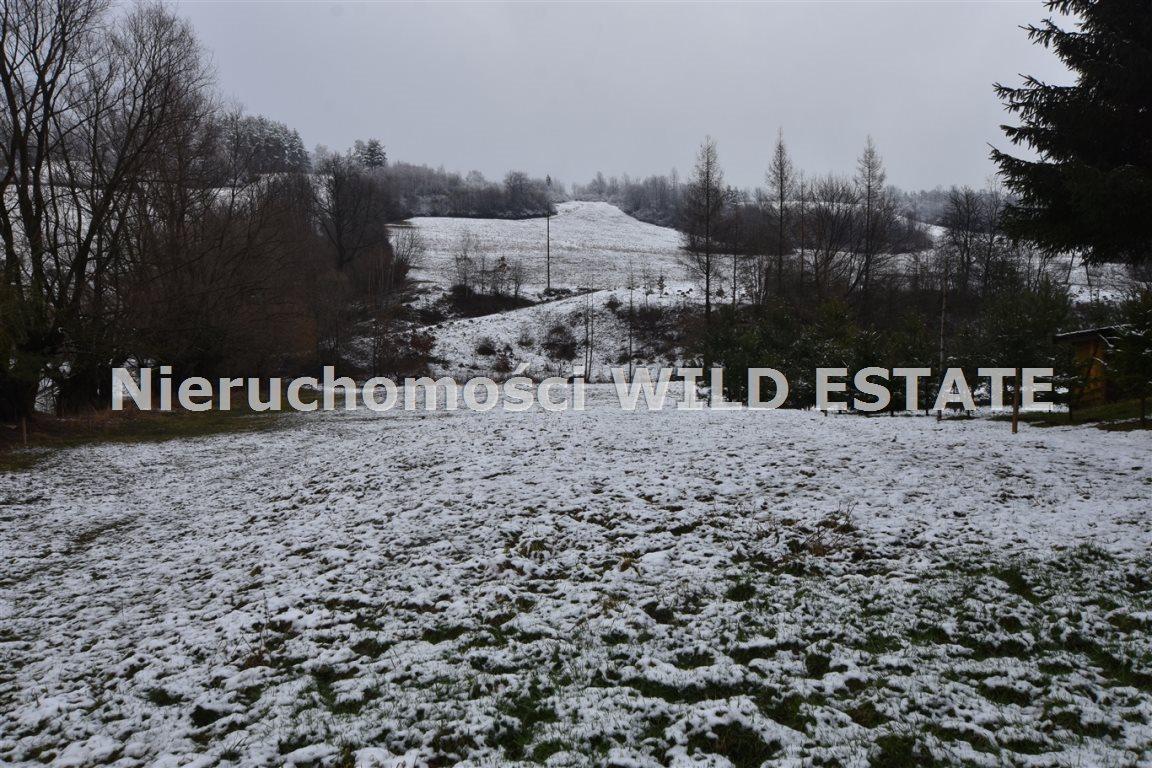 Działka rolna na sprzedaż Olszanica, Paszowa  4376m2 Foto 2