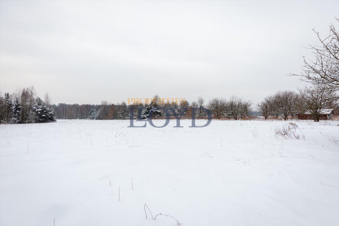 Działka rolna na sprzedaż Kruszew, kruszew  3000m2 Foto 8