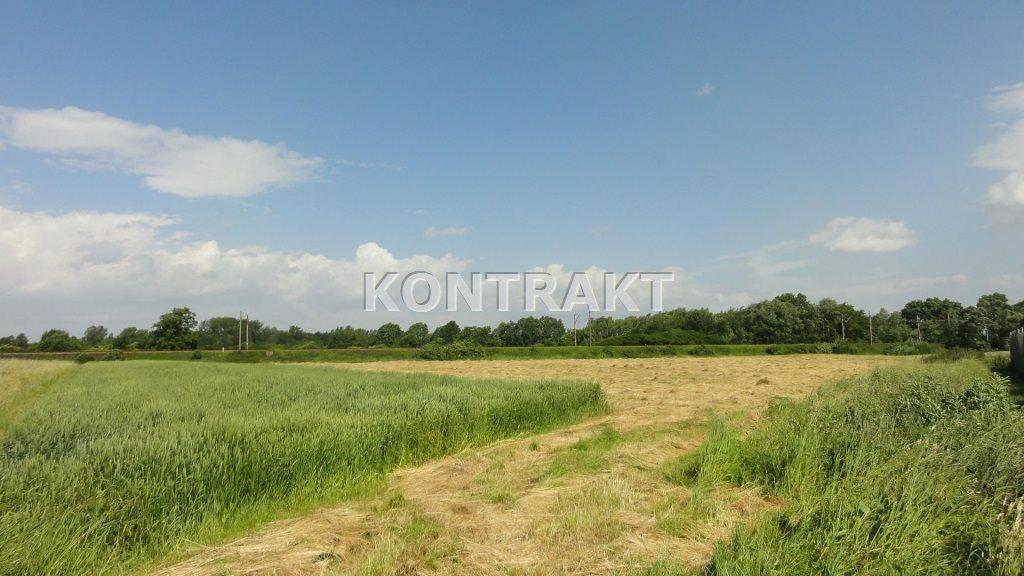 Działka komercyjna na sprzedaż Oświęcim, Babice, Krakowska  10484m2 Foto 3