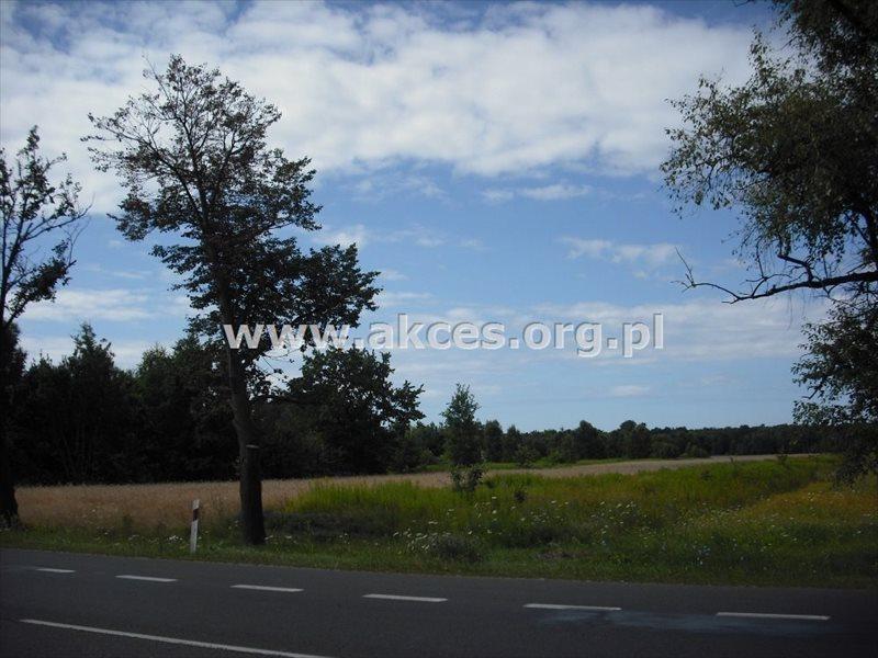 Działka leśna na sprzedaż Warszawa, Wesoła, Pohulanka  29964m2 Foto 4